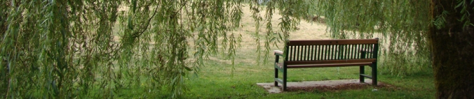 WILLOW TREE BENCH